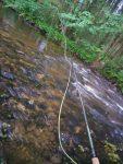 Les rivières des Vosges sont propices pour pêcher à la mouche